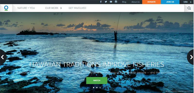 nonprofit website design CONSERVATION