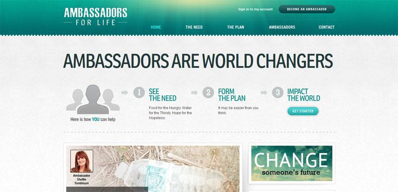 Nonprofit website design AMBASSADORFORLIFE