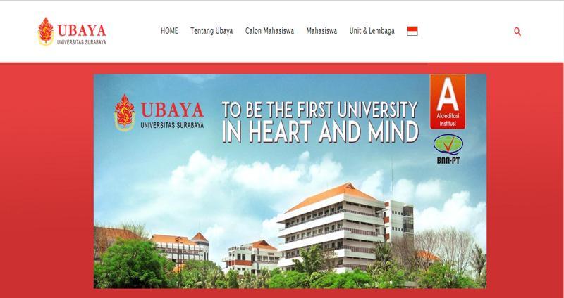 6 ubaya